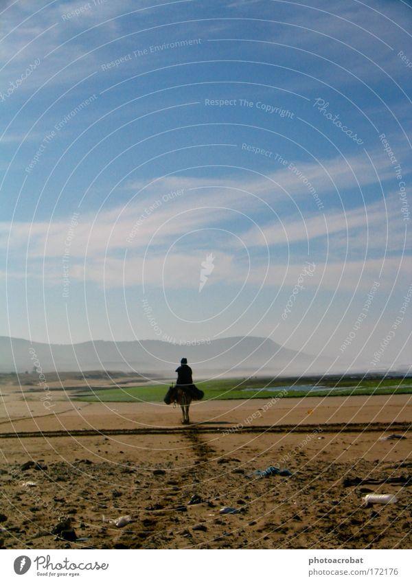 Einsamer Reiter Farbfoto Außenaufnahme Silhouette 1 Mensch Ferien & Urlaub & Reisen Zukunft Esel Pferd Reiten Strand Marokko Einsamkeit einsam alleine Weg Küste