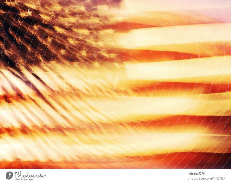 STARS AND STRIPES. Klima Macht USA Unendlichkeit Zeichen Fahne Gewalt Gesellschaft (Soziologie) Krieg Amerika Wirtschaft Kuba Stars and Stripes Klimawandel