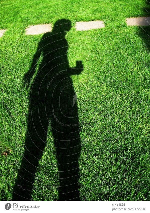 Schatten im Gras Mensch Natur grün Sommer ruhig feminin Wiese Gras Wärme Garten Wetter Zufriedenheit Kraft Erde gehen glänzend