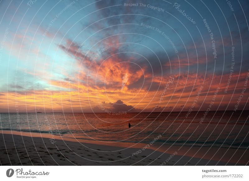ANGAGA - MALEDIVEN Natur Sonne Meer blau rot Sommer Strand Ferien & Urlaub & Reisen ruhig gelb Erholung Sonnenuntergang Sand Insel Idylle Indien