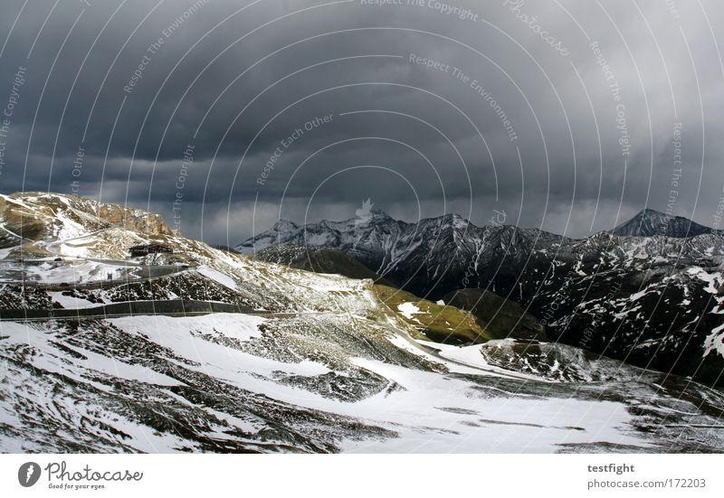 it´s snowtime, ladies and gentlemen Natur Pflanze Sonne Ferien & Urlaub & Reisen Wolken Einsamkeit Tier dunkel Schnee Berge u. Gebirge Landschaft Umwelt elegant