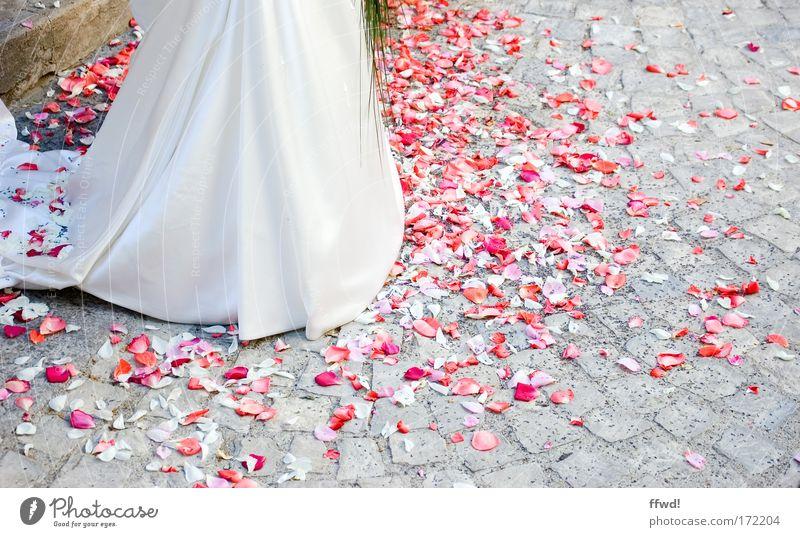Oh happy day elegant Stil Glück Hochzeit Frau Erwachsene Partner Leben 1 Mensch Rose Blüte Blütenblatt Rosenblätter Pflastersteine Kleid Brautkleid Fröhlichkeit