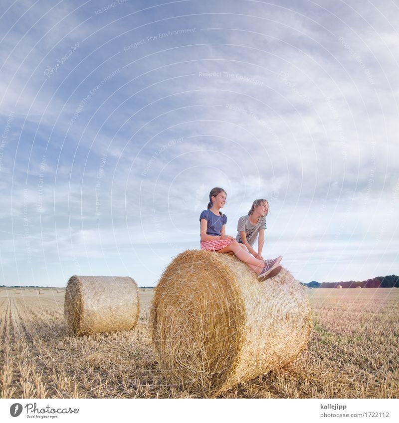 ferienbeginn Mensch Kind Mädchen Junge Geschwister Bruder Schwester Leben 2 Umwelt Natur Landschaft Sommer Feld sitzen Spielen Stroh Strohballen Rolle Zylinder