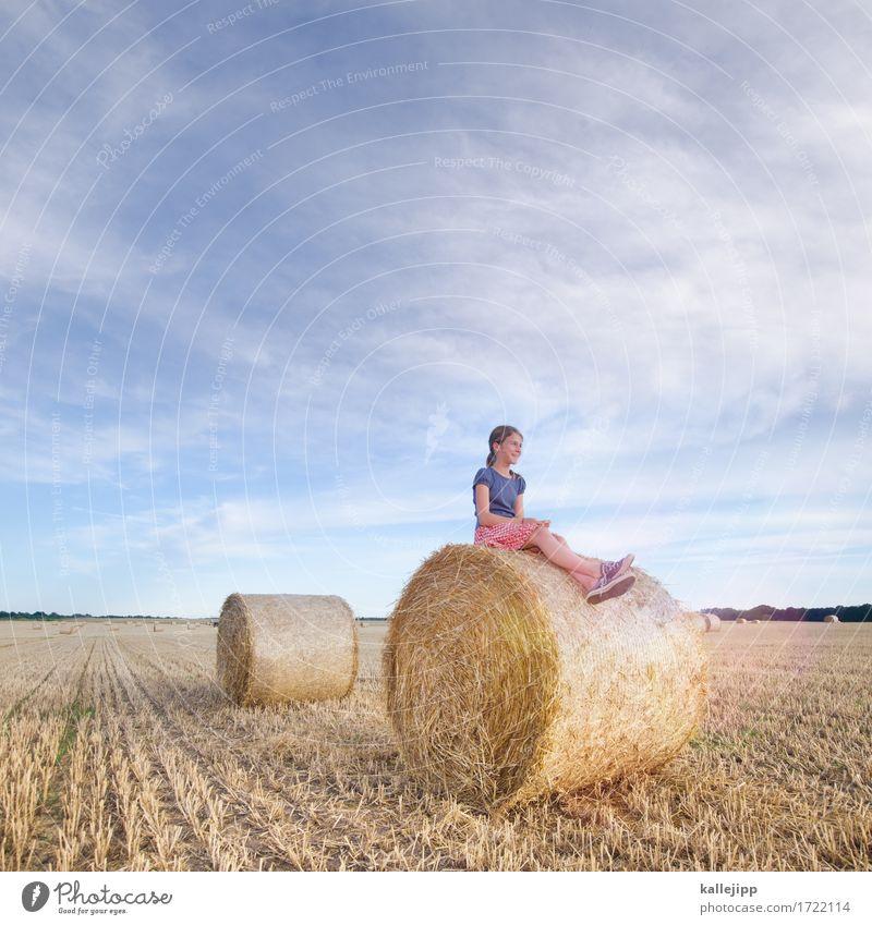 Mädchen auf Heuballen Kindheit Leben 1 Mensch Umwelt Natur Landschaft Schönes Wetter Feld sitzen Strohballen Erholung Zukunft Lächeln ruhig Sommer Ernte