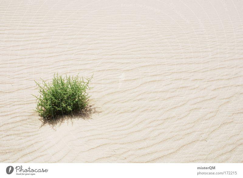 Monopol. Wasser grün Sommer Einsamkeit Leben Wärme Sand Wetter Klima Wüste Unendlichkeit trocken Surrealismus Ewigkeit hart extrem