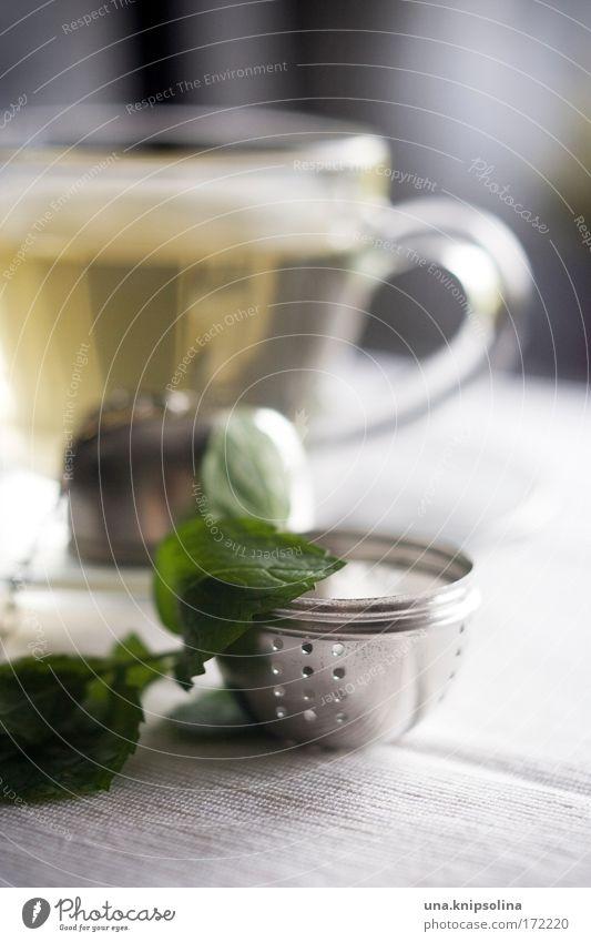 teatime Ernährung Kaffeetrinken Getränk Heißgetränk Tee Erholung Wärme Zufriedenheit Lebensfreude Gelassenheit ruhig Teetasse Pfefferminztee teeei brühen Wasser