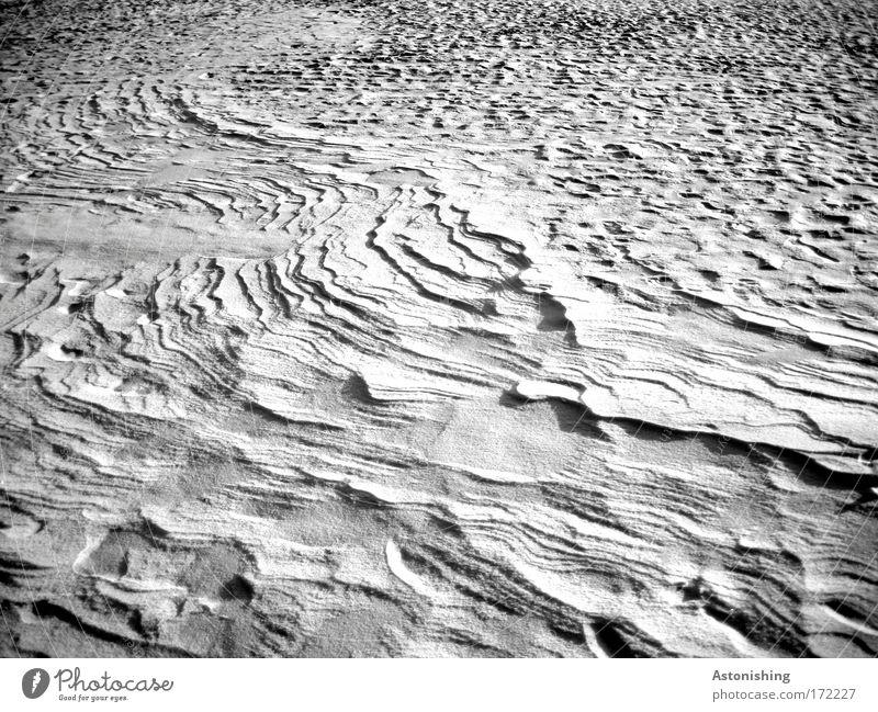 Schnee - Relief Umwelt Natur Winter Eis Frost kalt weiß Schwarzweißfoto Außenaufnahme Menschenleer Schatten Kontrast Hintergrundbild Schneedecke