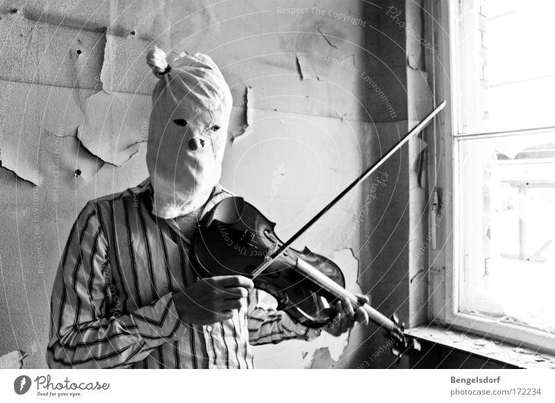Violine inkognito Mensch Einsamkeit Erwachsene Spielen Stimmung Musik Kunst maskulin verrückt einzigartig 18-30 Jahre Kreativität Konzert Hemd Bühne Künstler