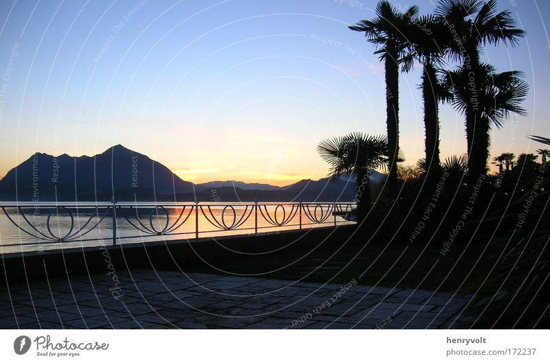 Wasser schön Baum träumen See Landschaft Europa weich Frieden Kitsch Italien Hügel Gelassenheit Seeufer Schönes Wetter exotisch