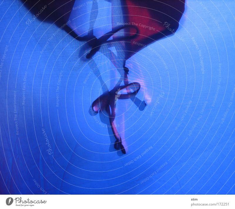 blau 08 Farbfoto Nahaufnahme Hintergrund neutral Schatten Silhouette Schwimmen & Baden Ferien & Urlaub & Reisen Sommerurlaub Sonne Sonnenbad Meer Badeanzug
