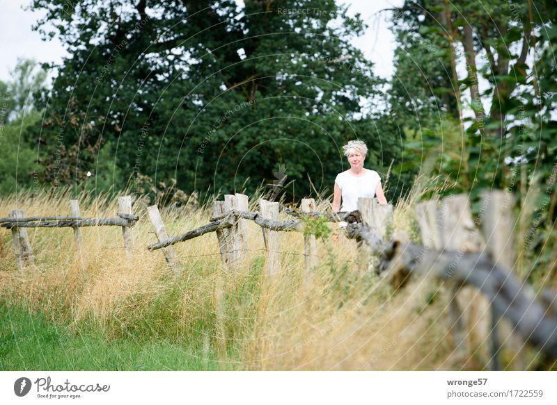 Entlang der Beeke Ferien & Urlaub & Reisen Ausflug Sommer Sommerurlaub Mensch feminin Frau Erwachsene Weiblicher Senior 1 45-60 Jahre Erholung gehen braun grau