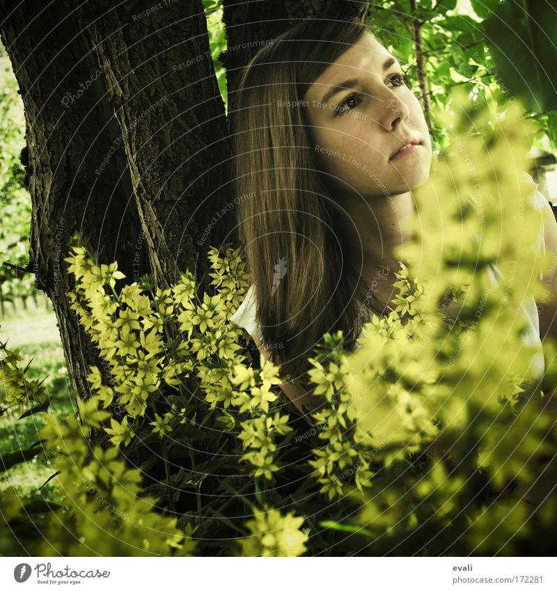 Hide Mensch Jugendliche Baum Blume grün Sommer Gesicht Blatt gelb feminin Blüte Frühling Garten Haare & Frisuren Kopf Denken