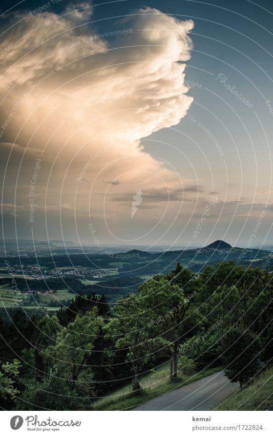 Cumulonimbus deluxe Abenteuer Ferne Freiheit Umwelt Natur Landschaft Pflanze Urelemente Luft Himmel Wolken Gewitterwolken Sommer Wetter Unwetter Baum Hügel