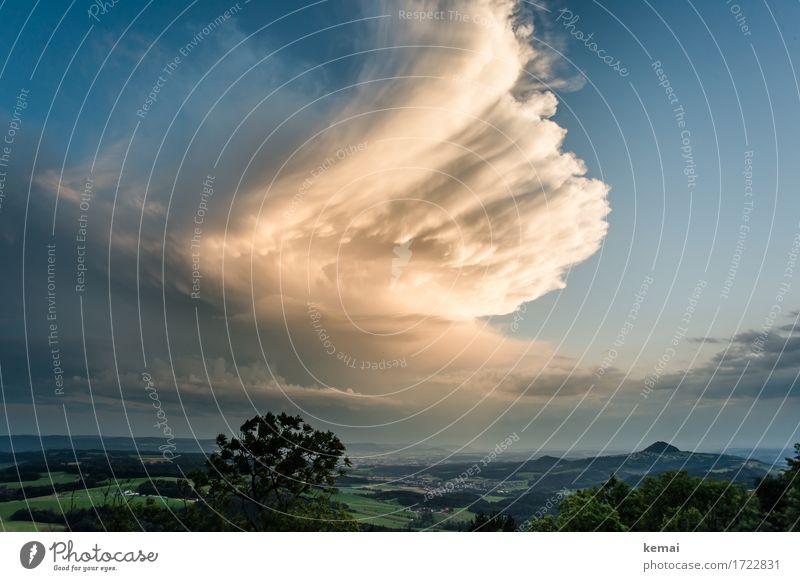 Chased by a storm Abenteuer Ferne Freiheit Umwelt Natur Landschaft Pflanze Urelemente Luft Himmel Wolken Gewitterwolken Sonnenlicht Sommer Wetter Sturm Baum