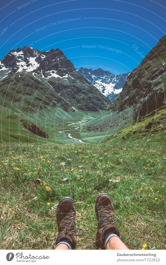 Fern sehen Freizeit & Hobby Ferien & Urlaub & Reisen Ausflug Ferne Freiheit Sommer Berge u. Gebirge wandern Natur Pflanze Klima Blume Gras Gipfel