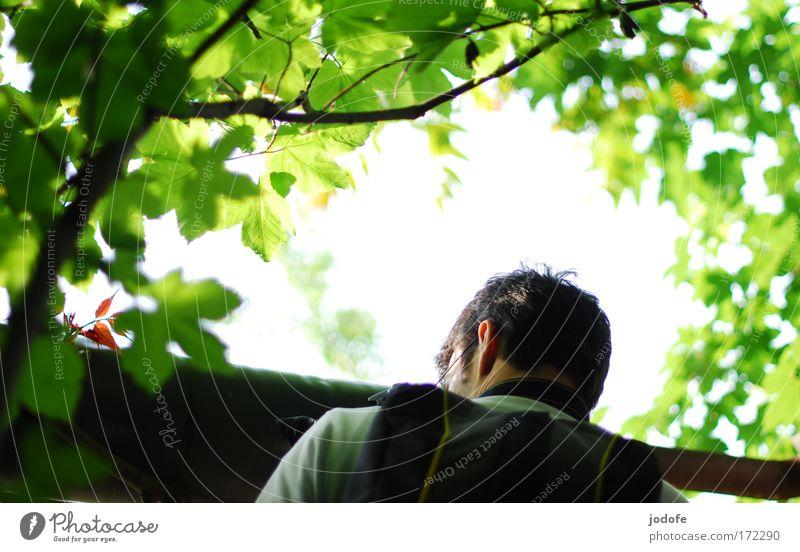 erleuchtung Mensch Himmel Natur Mann Baum Erwachsene Umwelt Mauer Kopf maskulin Freizeit & Hobby Sträucher Neugier erleuchten schwarzhaarig Interesse
