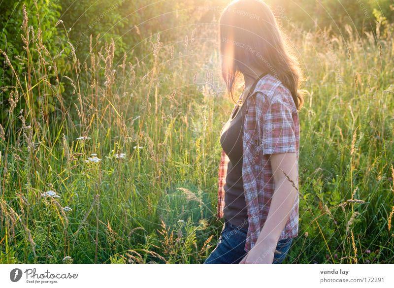 Summertime Frau Mensch Natur Jugendliche schön Pflanze Sommer ruhig Gras Wärme Zufriedenheit Mode Erwachsene laufen Jeanshose