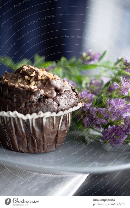 schokomuffin Feste & Feiern Lebensmittel Freizeit & Hobby frisch Ernährung süß genießen Blühend lecker Café Süßwaren Kuchen Duft Mahlzeit Schokolade Backwaren