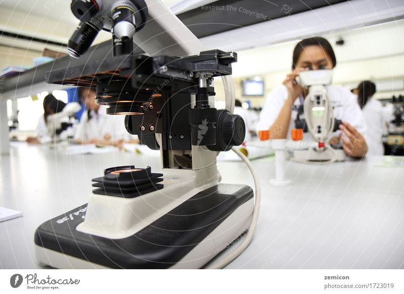 Studentinnen im Labor natürlich. Wissenschaften Schule lernen Klassenraum Azubi Arbeit & Erwerbstätigkeit Beruf Büro Technik & Technologie Frau Erwachsene