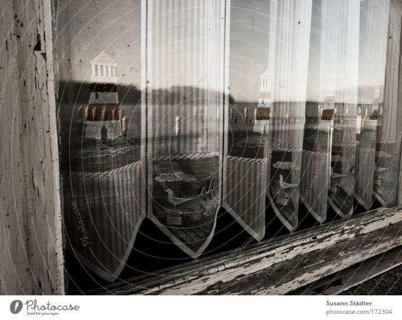 Am Fleesensee alt Wasser Strand Ferne Sand Küste Glas Sehnsucht Dorf Gelassenheit historisch Seeufer Möwe Flussufer Leuchtturm Gardine