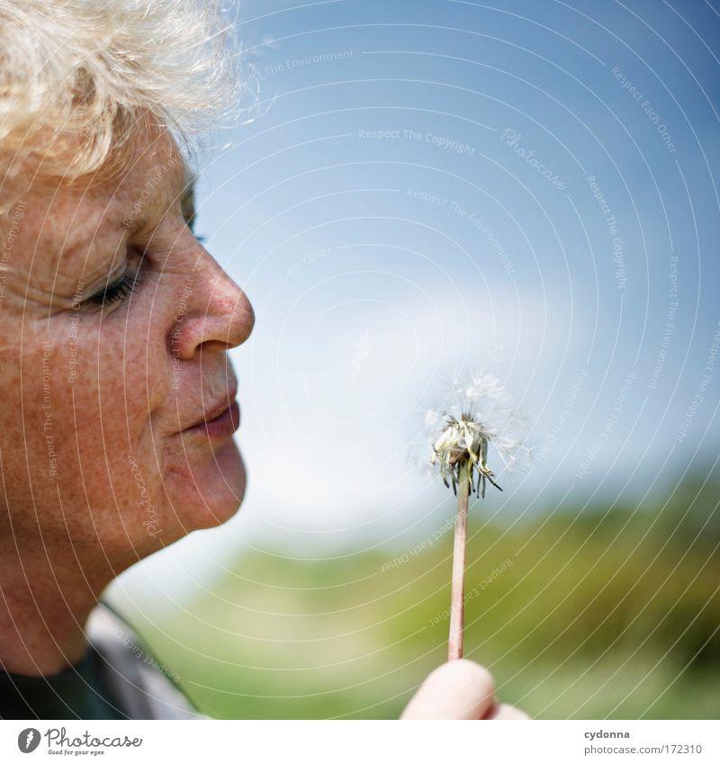 Pusteblume Mensch Frau Himmel Natur Pflanze Blume Gesicht Erwachsene Umwelt Leben Gefühle Senior Bewegung Freiheit träumen Zufriedenheit