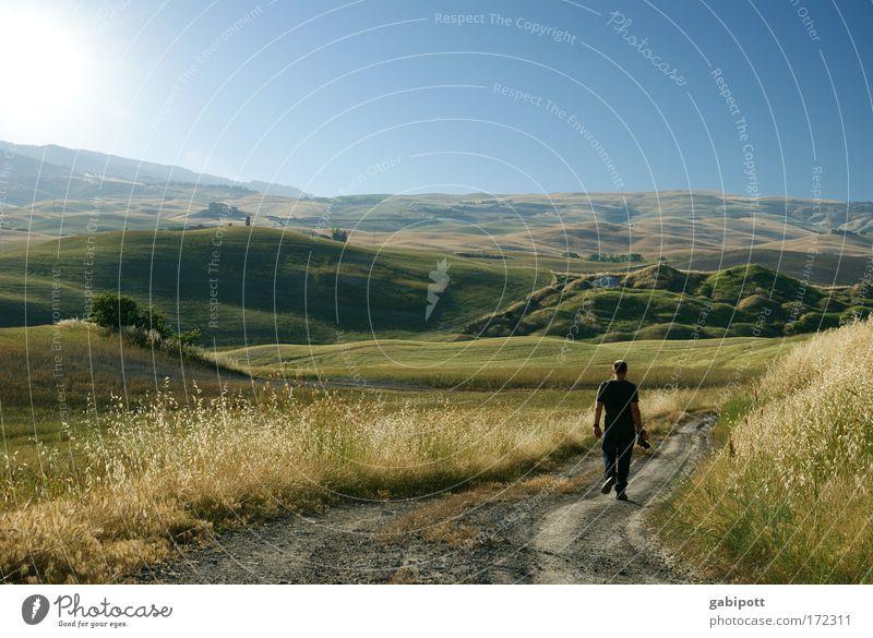 Into the wild Mensch Mann Natur Pflanze Ferien & Urlaub & Reisen Sommer Erwachsene Ferne Umwelt Bewegung Freizeit & Hobby gehen Ausflug wandern maskulin Abenteuer