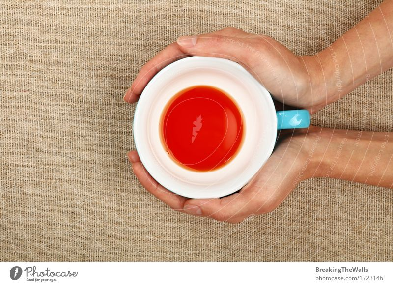 Zwei Frauenhände, die leere beendete Schale schwarzen Tee halten blau weiß Hand rot Erwachsene braun Aussicht Energie Warmherzigkeit Getränk festhalten heiß
