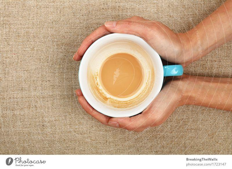 Zwei Frauenhände, die leere Lattecappuccino-Kaffeetasse halten blau weiß Hand Erholung Erwachsene Aussicht Energie Warmherzigkeit Getränk festhalten heiß Top