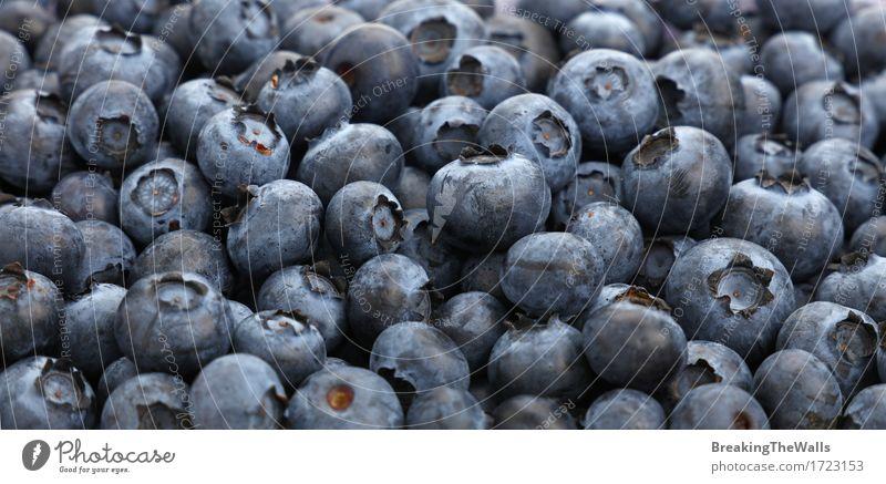 Frischer Blaubeerbeerenhintergrund-Musterabschluß oben Lebensmittel Frucht Ernährung Essen Bioprodukte Vegetarische Ernährung Diät frisch Gesundheit lecker