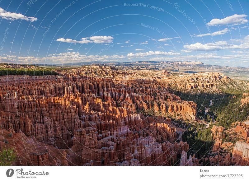 Bryce Canyon National Park Natur Landschaft Pflanze Erde Sand Luft Sommer Schönes Wetter Baum Wüste Bryce Amphitheater Sehenswürdigkeit Stein beobachten