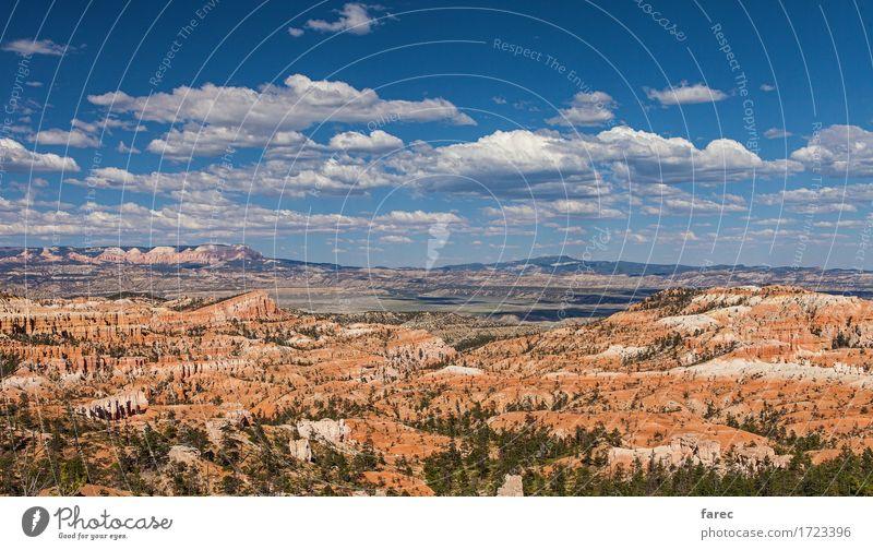 Bryce Canyon National Park Natur Landschaft Pflanze Erde Sand Luft Himmel Wolken Schönes Wetter Baum Wüste Bryce Amphitheater Sehenswürdigkeit Stein Erholung