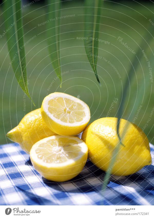 Zitronella grün Sonne Sommer ruhig gelb Wiese Lebensmittel Gesundheit Frucht ästhetisch Gelassenheit Bioprodukte Diät kariert Vitamin Zitrone