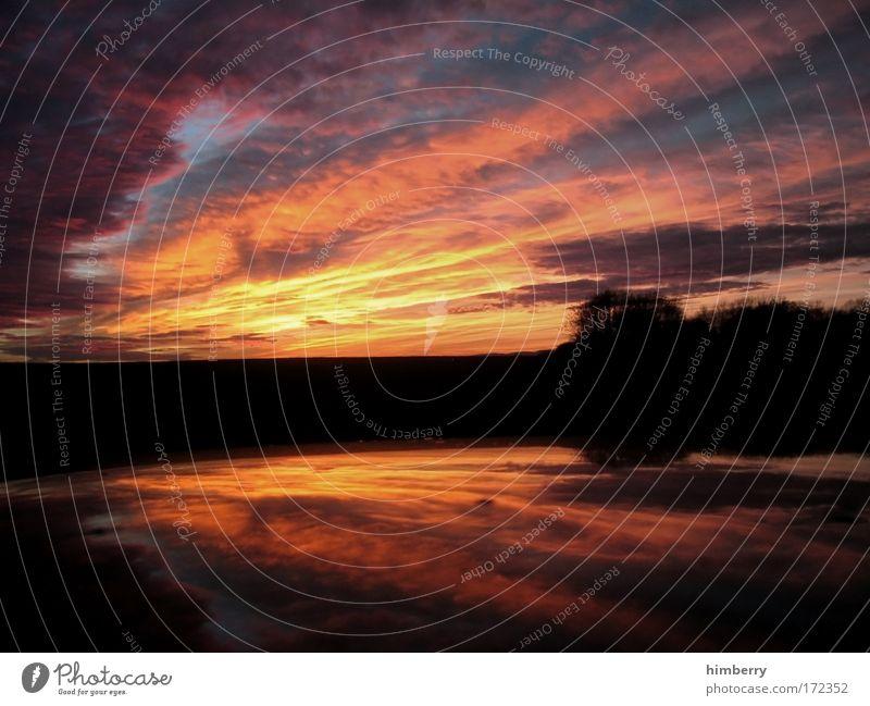 sommernachtstraum Natur Himmel Pflanze ruhig Wolken Einsamkeit Erholung träumen Landschaft Zufriedenheit Sonnenuntergang Wind Wetter Umwelt groß Horizont