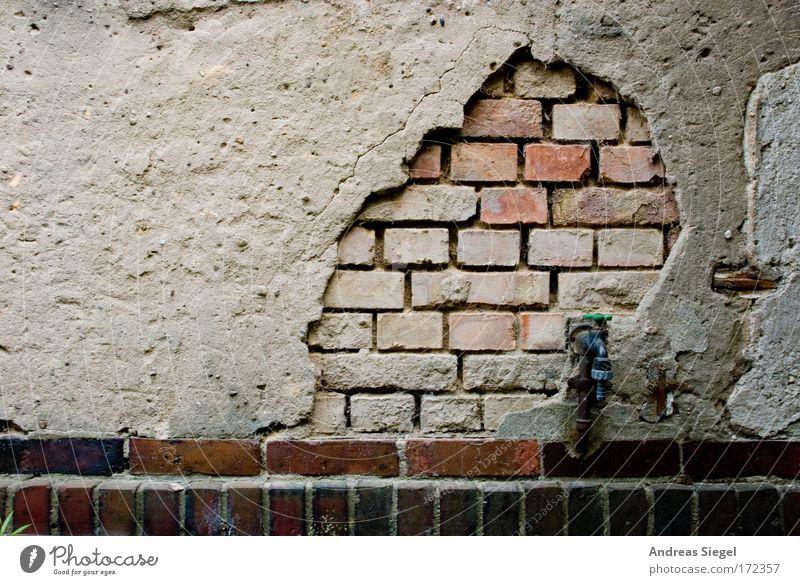 Alt werden Farbfoto Außenaufnahme Detailaufnahme Strukturen & Formen Menschenleer Textfreiraum links Kontrast Dresden Stadtrand Altstadt Haus Einfamilienhaus