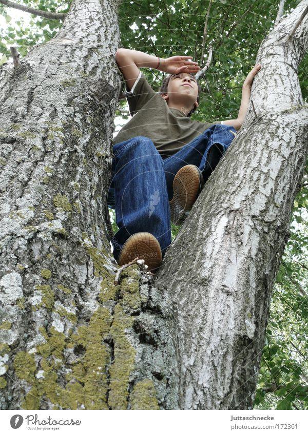 Winnetou Kind Baum Freude Mensch Junge Spielen oben Freiheit frei Aussicht Klettern beobachten Lebensfreude Indianer Späher