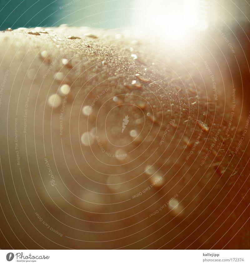 under my skin schön ruhig Erholung Leben Körper Zufriedenheit Haut Wassertropfen Wellness Kosmetik Wohlgefühl Schweiß Körperpflege Waschen harmonisch Sinnesorgane