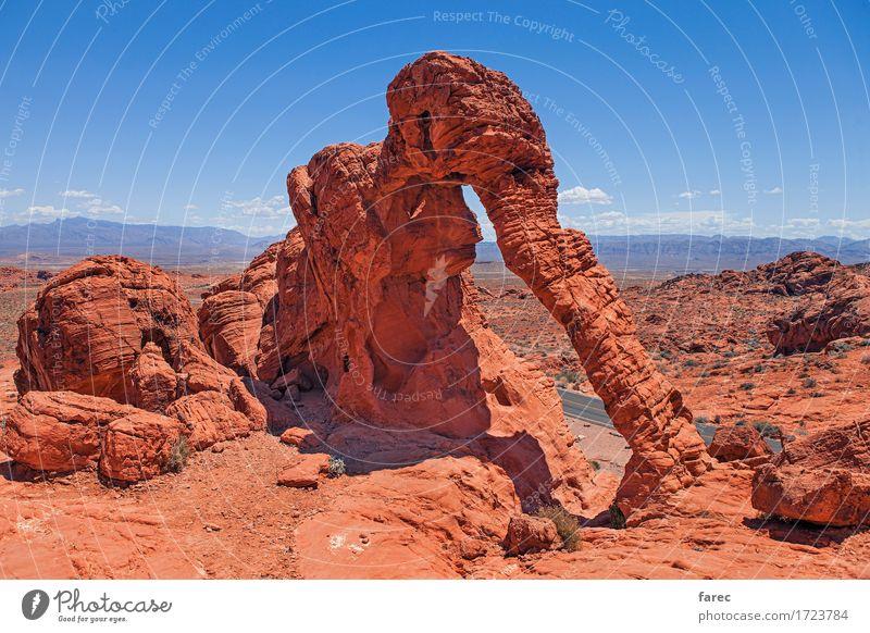 elephant rock valley of fire Landschaft Erde Sand Wolkenloser Himmel Sonne Sommer Schönes Wetter Berge u. Gebirge Wüste Valley of fire Sehenswürdigkeit Stein