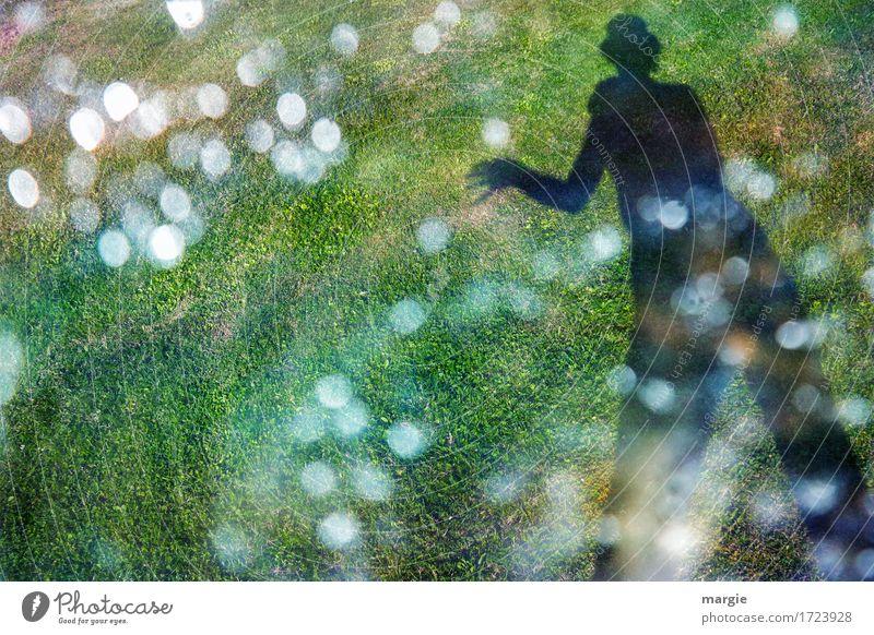Punkte - Fänger: Der Schatten einer Person mit Zylinder auf einer Wiese, die mit den Händen Lichter fängt Mensch maskulin feminin Frau Erwachsene Mann 1 Sonne