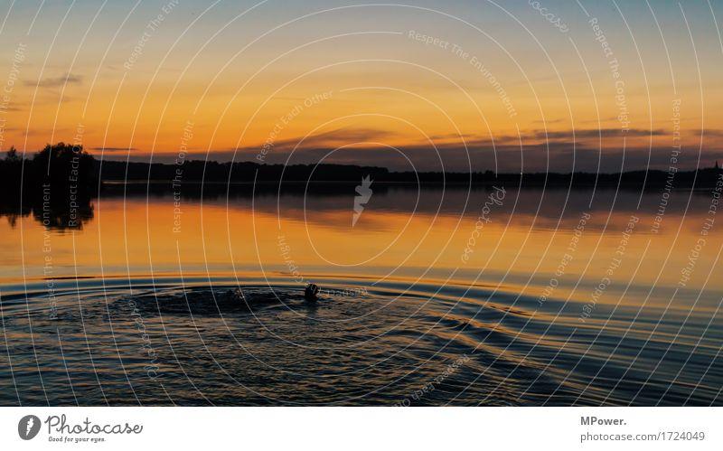 nachtbaden Wellness Wohlgefühl Sinnesorgane Freizeit & Hobby Ferien & Urlaub & Reisen Tourismus Abenteuer Sommer Sommerurlaub Sonne Strand Mensch Mann 1