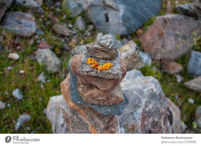 Wegweiser Kunst Kunstwerk Natur Blume Blüte Felsen Alpen Stein braun gelb grau grün Dekoration & Verzierung Turm Steinturm Farbfoto Außenaufnahme Menschenleer