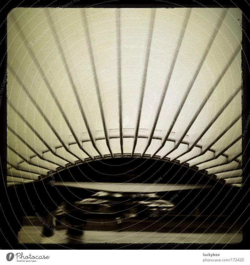 Das Dach des Ostens Architektur Gebäude Metall Linie Glas Design modern Tourismus leuchten Dach Streifen Schutz Bauwerk Stahl Bahnhof Sehenswürdigkeit