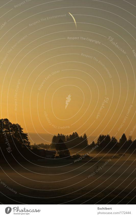 Morgendlicher Schleier Himmel Natur Baum rot Ferien & Urlaub & Reisen Sonne Sommer schwarz Haus ruhig gelb Erholung Wiese Landschaft Kraft Nebel