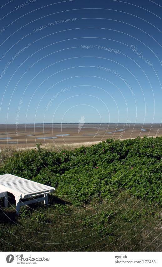 Mach mal Pause (2) Natur Wasser Himmel Sonne Meer Sommer Strand Ferien & Urlaub & Reisen ruhig Ferne Erholung Gras Freiheit Sand Landschaft