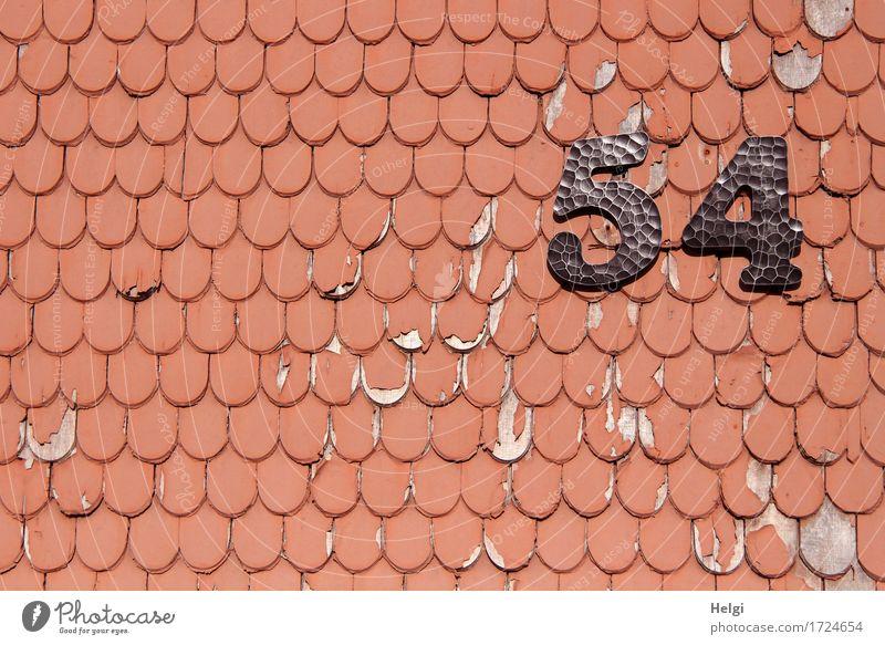 AST 9 | vierundfünfzig Kleinstadt Haus Gebäude Mauer Wand Dachziegel 54 Holz Metall Ziffern & Zahlen alt authentisch außergewöhnlich einzigartig kaputt grau rot