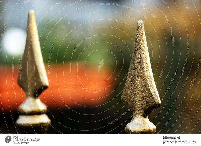 Spitzenbild mit Spitzentitel rot schwarz Garten grau Metall glänzend gold gefährlich bedrohlich Schutz Spitze Tor Stahl Zaun Lack Mittelalter