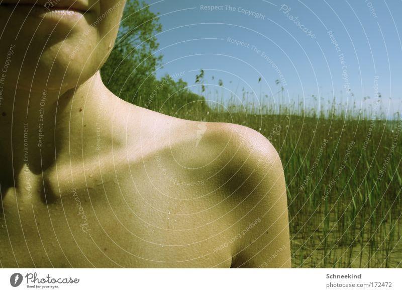 Schulterblick Mensch Himmel Jugendliche Sommer Einsamkeit Erwachsene feminin nackt Gras Küste Mund Schwimmen & Baden ästhetisch stehen Sträucher 18-30 Jahre