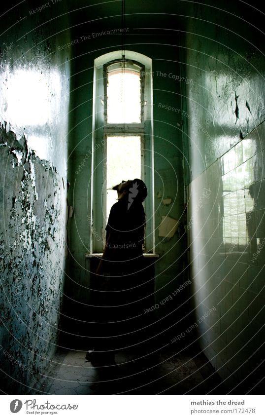 SEEKING TO ESCAPE alt Einsamkeit Erwachsene dunkel Fenster Wand Traurigkeit Mauer hell Angst warten maskulin gefährlich kaputt Hoffnung einzigartig
