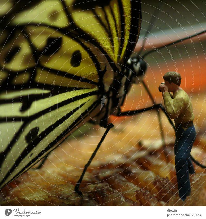 Knöcheltief in der Banane Mensch Mann Natur Tier Erwachsene Umwelt klein Makroaufnahme Freizeit & Hobby Fotografie maskulin groß Abenteuer Wildtier außergewöhnlich stehen