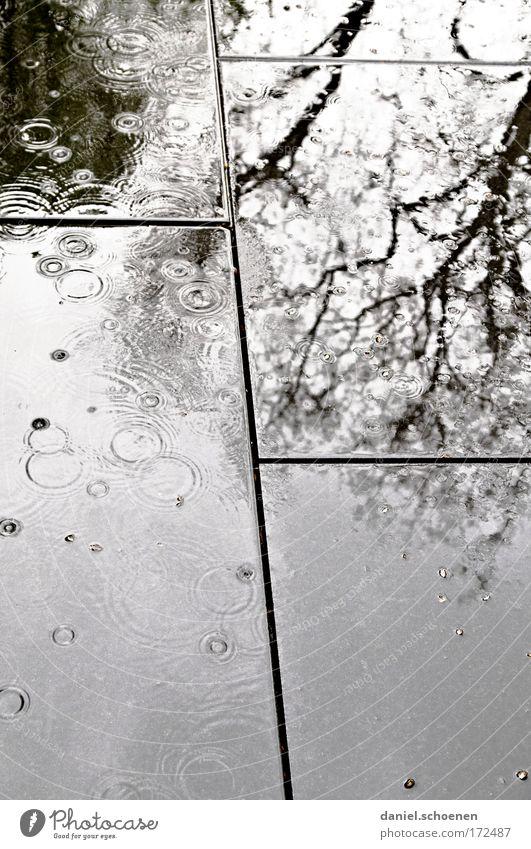 Wetteraussichten Gedeckte Farben Menschenleer Licht Schatten Silhouette Reflexion & Spiegelung Wasser Wassertropfen schlechtes Wetter Regen Stein dunkel