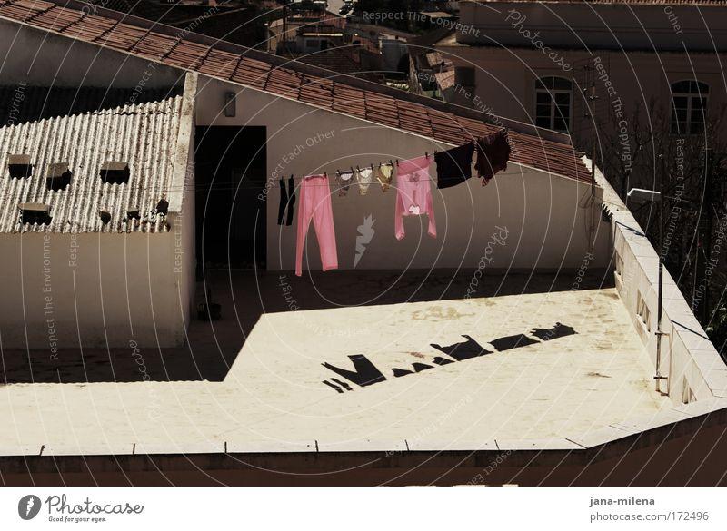 Freiluftwäschetrockner Haus Wand Mauer rosa Tür nass Dach Sauberkeit Dorf Hose Hemd Terrasse Unterwäsche Wäsche Portugal Hinterhof